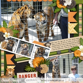 16-01-09-Danger-wild-animals-700b.jpg