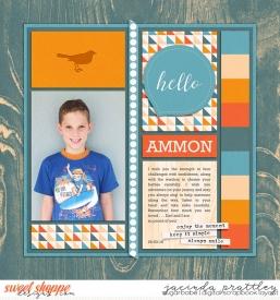 16-03-29-Ammon-700b.jpg