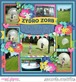 17-10-04-Zydro-Zorb-700b.jpg