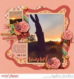 170617-Arizona-Sunset-Watermark.jpg