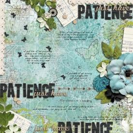 2013_02_26-patience.jpg