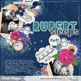 2015_2_13-rupert-sleeps.jpg