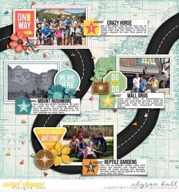 2016-06-Epic-Road-Trip-Highlights-1-WEB-WM.jpg