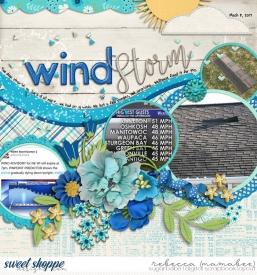 2017_3_8-windstorm-ScrapSnap6.jpg