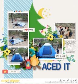 Aced-it_b.jpg