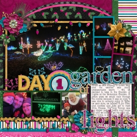 DD_2012_12_01-garden-of-lights.jpg
