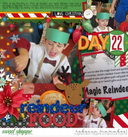 DD_2012_Day22-magic-reindeer-food_hp115.jpg