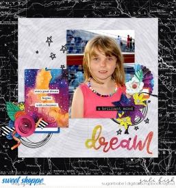 Dreamer_ssd1.jpg