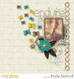 Endure-1-10-WM.jpg