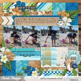 Florida_2015_2_7-beach.jpg