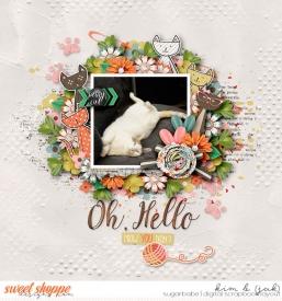Meow-you-doin_b.jpg