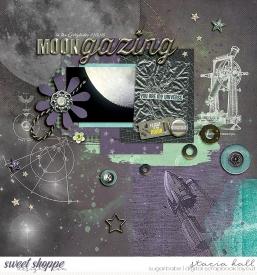 Moongazing-700wm.jpg