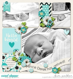 Prince-Derek-has-ArrivedWM.jpg