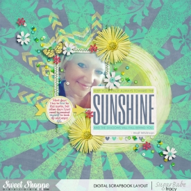 SSD-sunshine2014WM.jpg