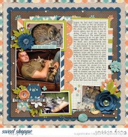 TTT_MMM-Crazy-Cat-Lady-_BM--Duo-33_.jpg