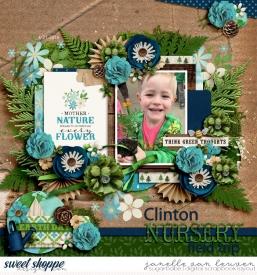clinton-nursery.jpg