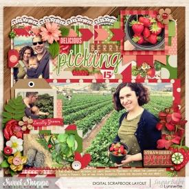 nettio_201527-berrypicking-ssd-700.jpg