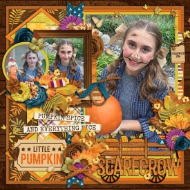 scarecrow_700web.jpg