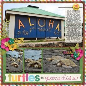 turtles-in-paradise.jpg