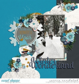 winterwonderlandWebWM.jpg