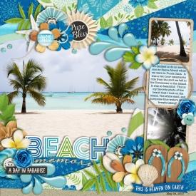 beachmemoriesweb700.jpg