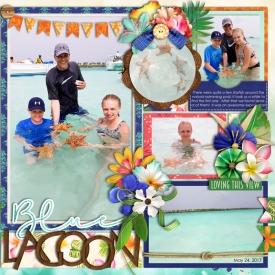 blue-lagoon-2pgrightweb700.jpg