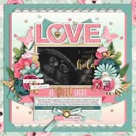 loveatfirstsight700web.jpg