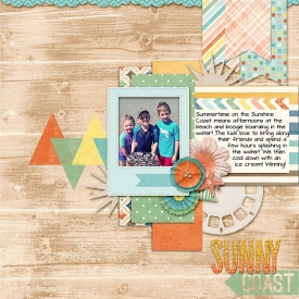 SunnyCoast-copy.jpg