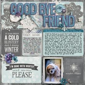 2014-12-27-Goodbye-Friend.jpg