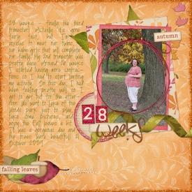 28weeks_fall2009.jpg