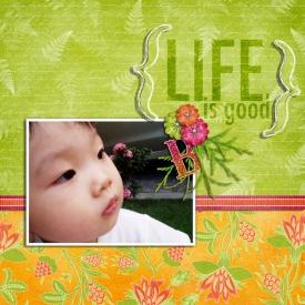 Life-is-Good3.jpg