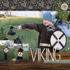 Viking_big.jpg