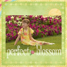 blossom-copy.jpg