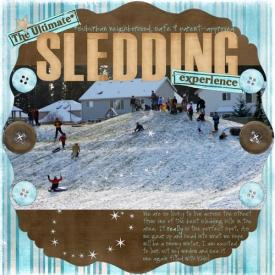 the-ultimate-sledding-exper.jpg
