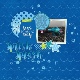 19-splish-splash-0722mb.jpg