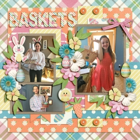 baskets_ssd.jpg