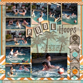 2013-PoolHoops.jpg