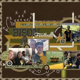 Bison_Football_big1.jpg
