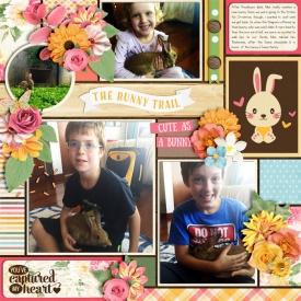 web_Bunny.jpg