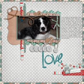 puppy-love8.jpg