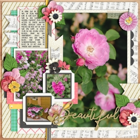 Beautiful-7001.jpg