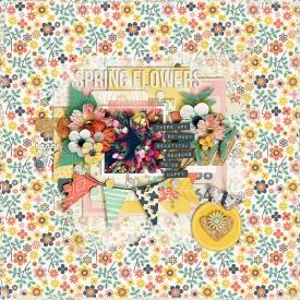 Spring-flowers-700.jpg