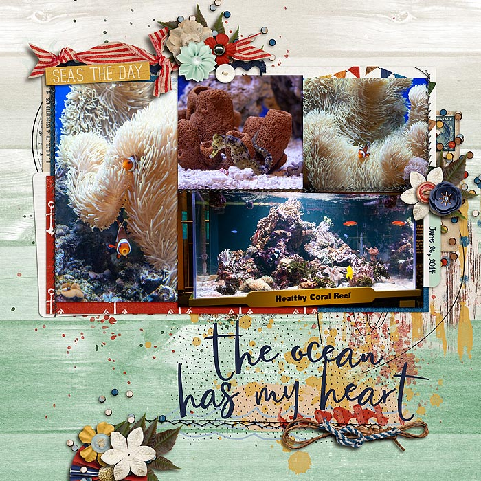 The-ocean-has-my-heart