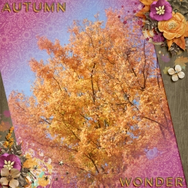 AutumnWonder.jpg