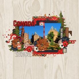 BIM_Canada.jpg