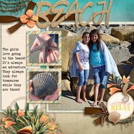 Beach_SwL_700.jpg