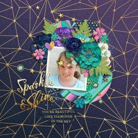 Sparkle_shine_copy1.jpg