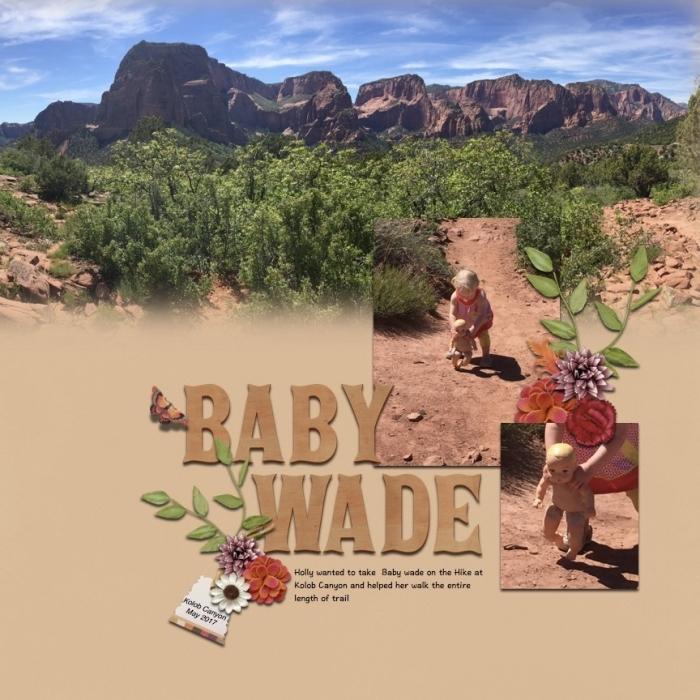 baby wade