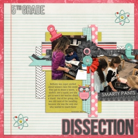 5thgradedissection.jpg