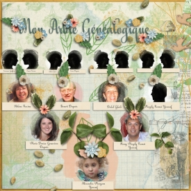 Arbre_genealogique.jpg